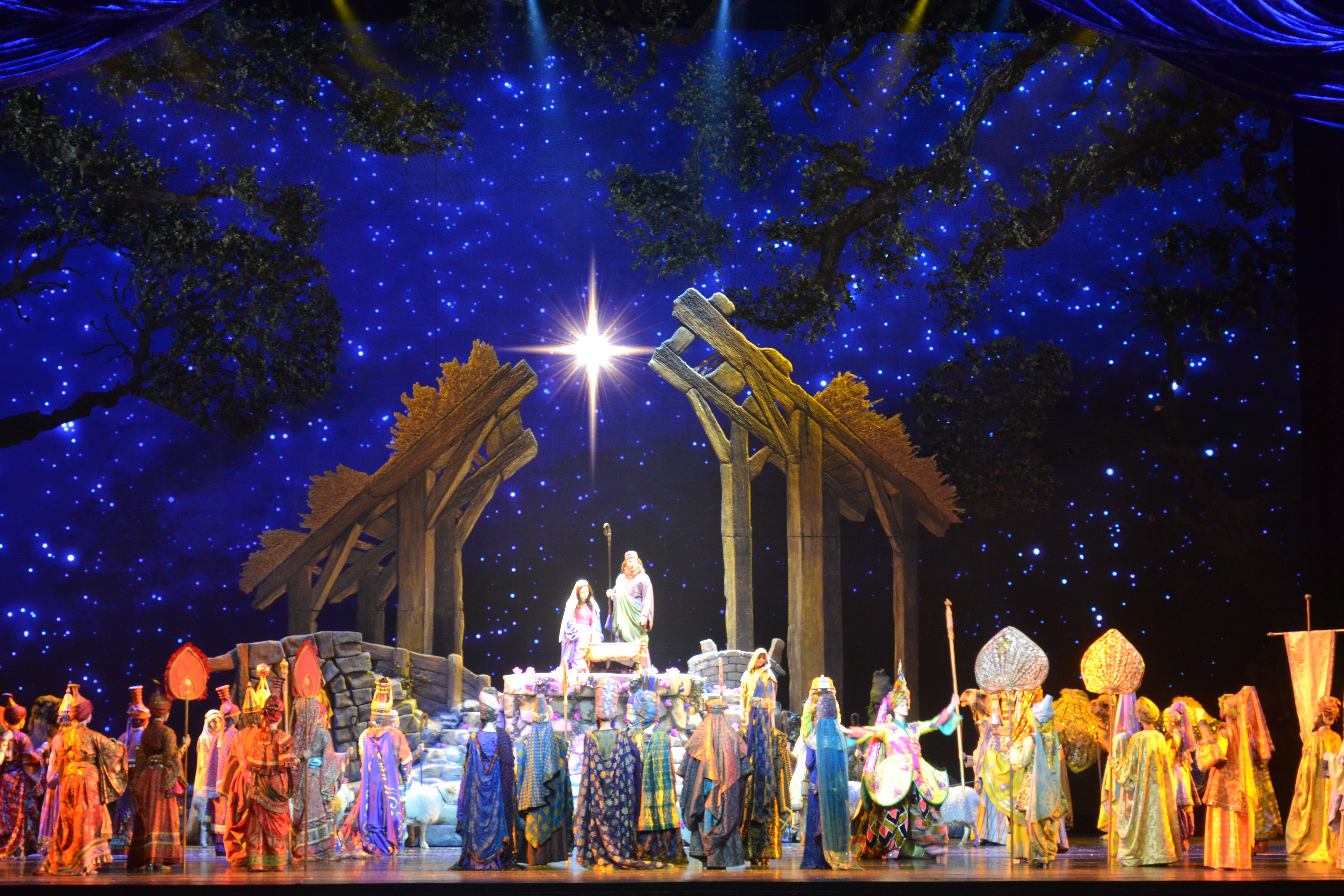 During the past week, I have seen many wonderful nativity scenes. The ...